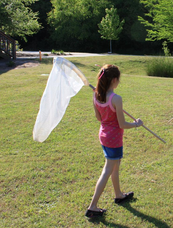 Reed Creek Girl Catching Insects