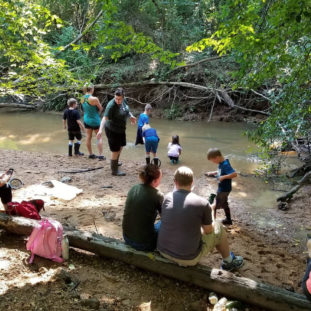 hands-on education at reed creek park in the creek